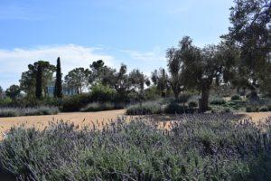 Οι τέσσερις εποχές στο ΚΠΙΣΝ: Εξερεύνηση του Κήπου @ Κέντρο Πολιτισμού, Ίδρυμα Σταύρος Νιάρχος